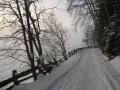 alpbach_40